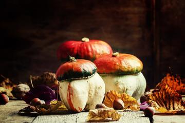 Autumn concept. Decorative pumpkin mushrooms on a vintage wooden