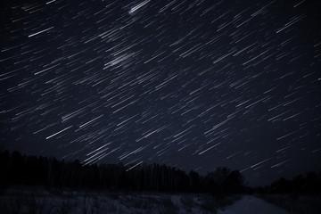 star tracks sky forest