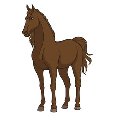 Vector color illustration of a horse. Isolated object on a white background.