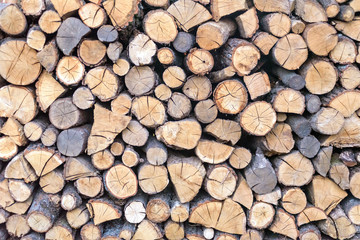 wall firewood , Background of dry chopped  logs in a pile