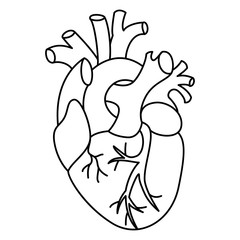Flat style linear heart illustration