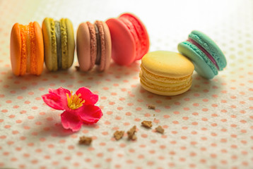 Macarons is a French sweet meringue-based