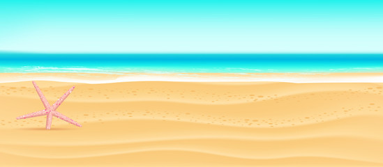 sandy beach summer sea banner background with  starfish