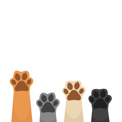 Paws up pet background