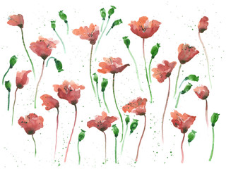 Poppies watercolor seamless background