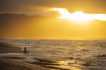 Male surfing at waters edge, Oahu, Honolulu, Hawaii, United States of America