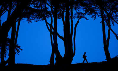 Hiker at dusk, Lands End, San Francisco, California, United States of America