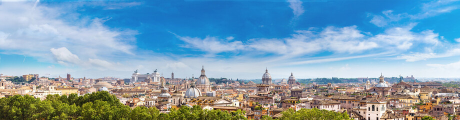 Wall Mural - Panoramic view of Rome