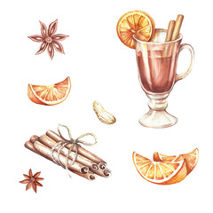 Mulled wine,oranges,cinnamon.Hand draw watercolor illustration.