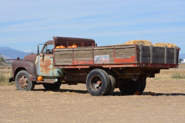 Old rusting vintage farm truck full of pumpkins and hay bales for Halloween preparation