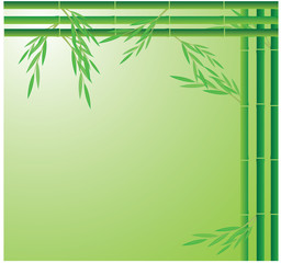 bamboo background vector design