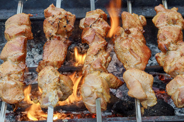 Meat roasted on fire barbecue kebabs  the grill