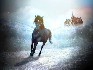Horse in fairy winter landscape