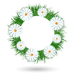 Camomile wreath vector icon isolated on white background