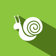 Snail icon with shadow on green background
