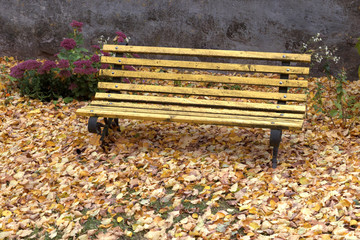 old wooden bench in city park. natural vintage autumn background
