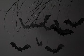 halloween with silhouettes of black bats on a tree branch on a dark background