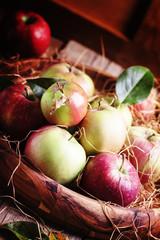Fresh apples in vase, dark wood background, selective focus