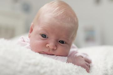 Cute adorable newborn baby portrait