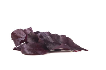 a group of young red beet leaf lettuce