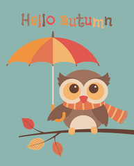 Cute owl cartoon illustration with text 'hello autumn' for card design, banner or poster.