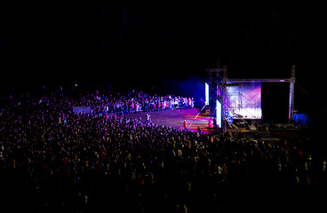 Music Festival. Night concert. Fans at the concert.