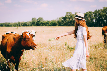 Red-haired woman walking on a field with cows,red-haired girl in a field of wheat in a white dress  smiles a lovely smile , a perfect picture for advertising in the style lifestyle