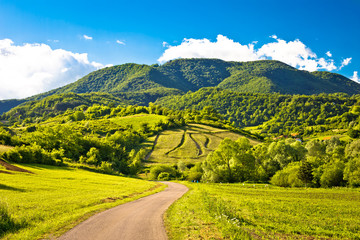 Foto op Plexiglas Heuvel Springtime landscape on Plesivica hills