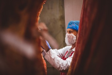 Butcher examining the red meat hanging in storage room