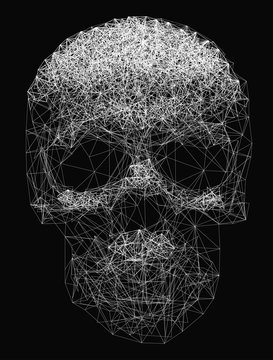 Vector line art. Skull illustration. Polygonal network of thin lines on Black background.