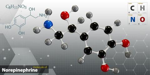 Illustration of Norepinephrine Molecule isolated gray background
