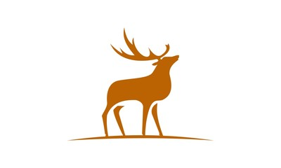 19 Deer Flat Logo Icon