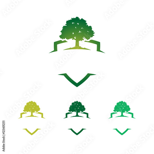 green strong badge shield oak tree logo template stock image and rh fotolia com  oak tree logo vector