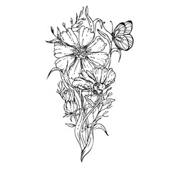 black and white hand drawn floral ornament with cosmos flower and butterfly. sketch. Vector eps 8