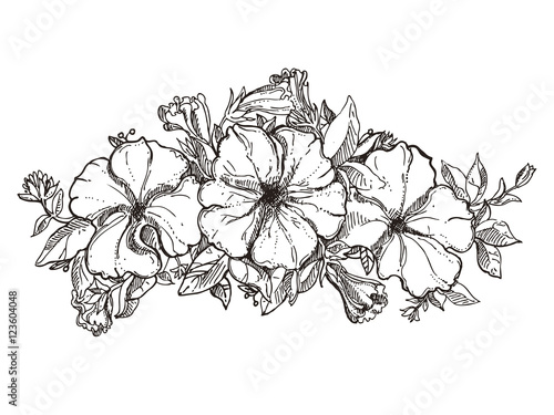 """black and white hand drawn floral ornament with petunia ..."