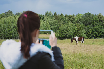 Blurred girl on foreground holding smartphone and making picture of gorgeous horse outdoors