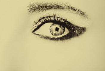 Eye Makeup. Beautiful Eyes Glitter Make-up. Holiday Makeup detail