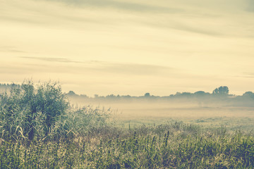 Morning mist in the wilderness on a cold morning
