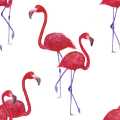 Flamingo seamless pattern on white background. watercolor painting Flamingo design for fabric and decor.