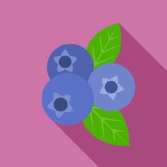 Vector blueberry icon, flat design