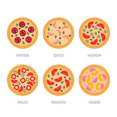 Pizza icon set. Pepperoni, mushroom, seafood, mexican, margherita, hawaiian pizza. Flat style vector illustration.