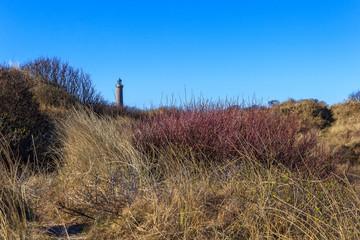 Wall Mural - Leuchtturm von Skagen in den Dünen