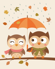 Cute couple of owls illustration with falling leaves background