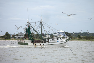 Commercial shrimping boat off South Carolina