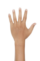 hand showing the five fingers on white background
