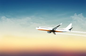 Airplane in the sky at mild sunset (with overlay) - 3d illustration