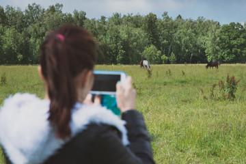 Blurred girl on foreground holding smartphone and making picture of two gorgeous horses outdoors