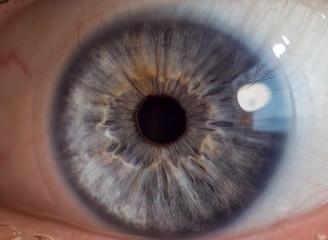 Fotobehang Macrofotografie Blue man eye with contact lens, macro shot. Shallow depth of field.