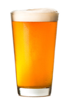 Pint glass of amber ale lager beer with golden light and foamy head isolated on white background