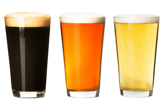 Three foamy pints stout ale pilsner lager beer isolated on white background for use alone or as a design element